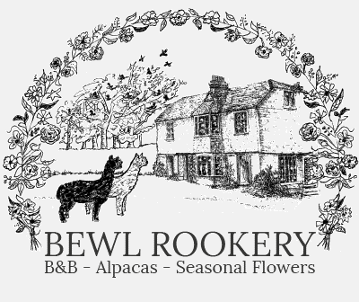 Bewl Rookery
