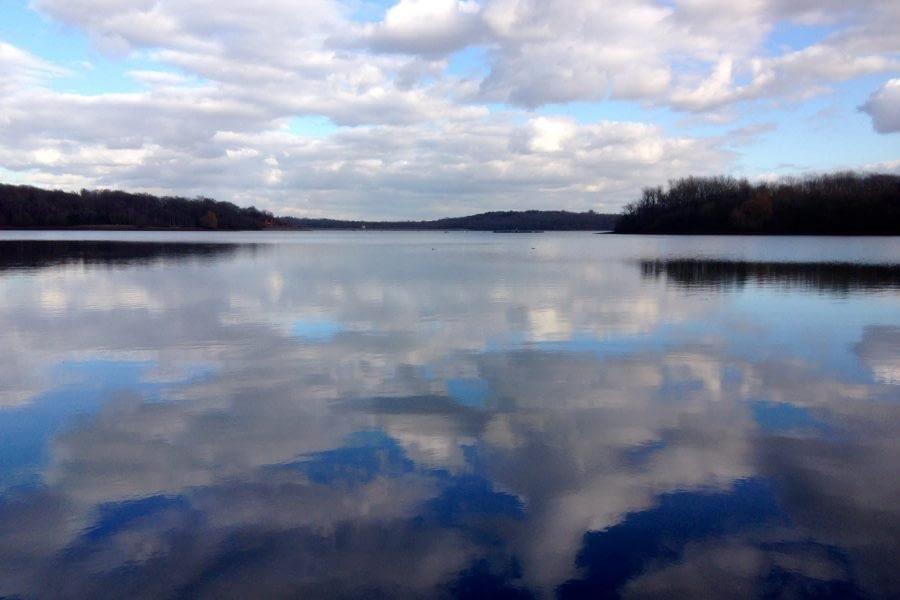 Bewl Water reflections on lake