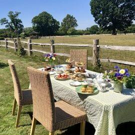 tea-with-our-alpacas-1-5